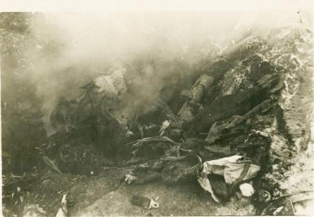 Догорают фашистские стервятники. 1942 год