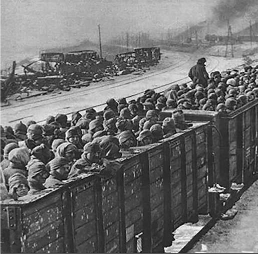 Прибытие пленных из Вяземского котла в лагерь № 126.